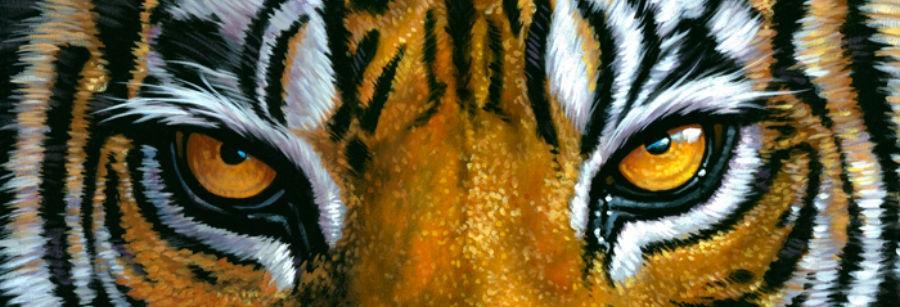 tigre cattiva Come farsi rispettare